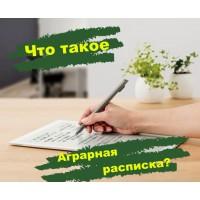 Что такое аграрная расписка? Виды расписок в Украине