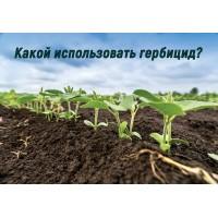 Как и какой выбрать гербицид?